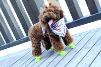 A-bomb silicone waterproof pet rain shoes/dog rain shoes pet product
