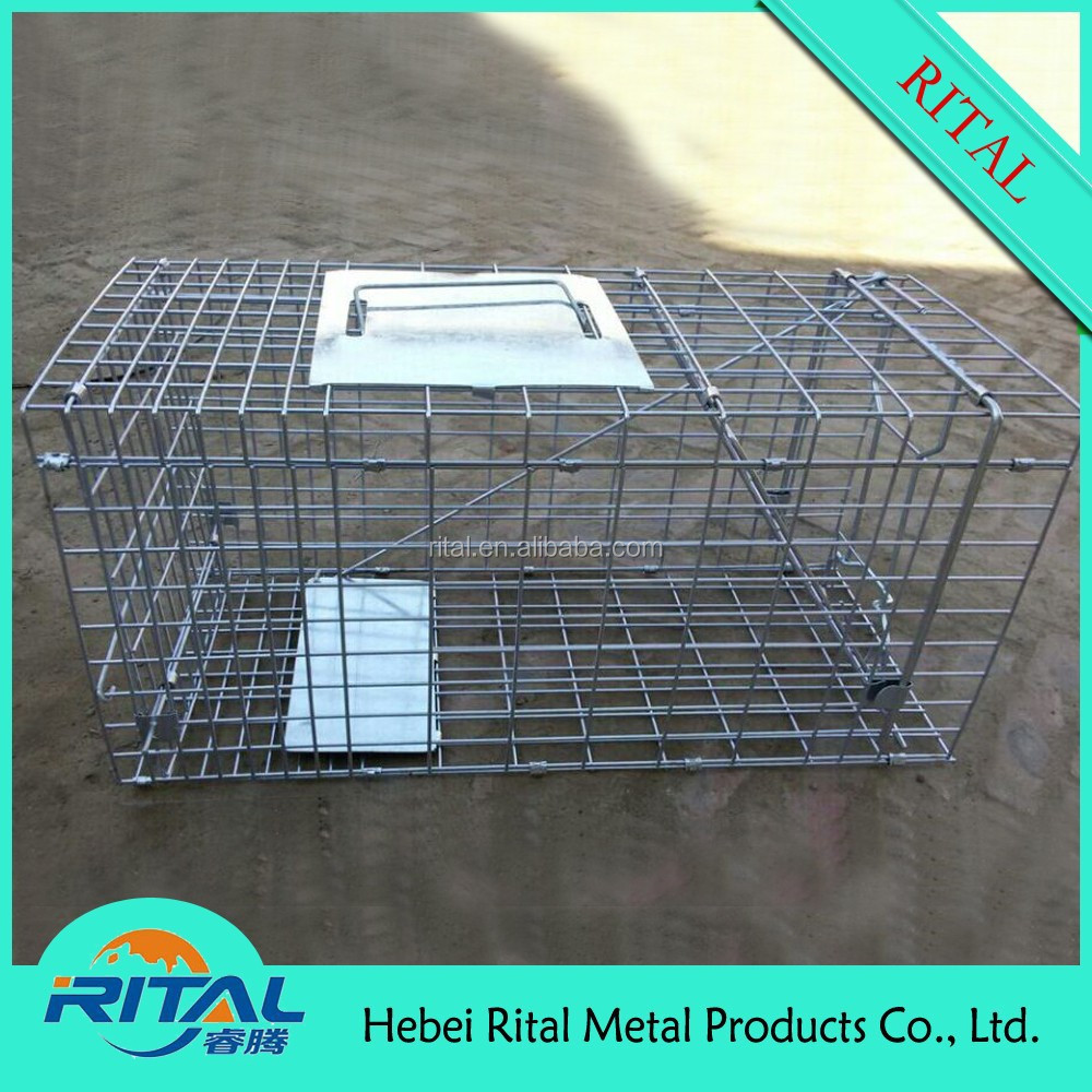 RAT TRAP MOUSE MICE HUMANE RODENT CAGE