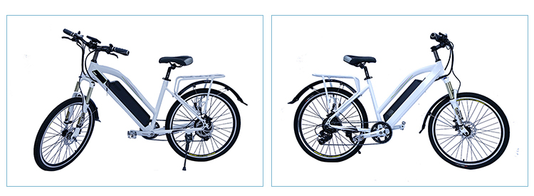 Iso9001 Quality Ensure Factory Manufacturer 36v Electric City E-Bike