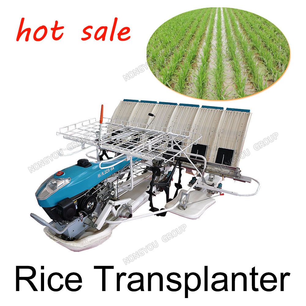 Factory Direct Sale Rice Transplanter Machine Transplanting Of Seedlings Cheap Manual Rice Planting Machine Manual 2ZS-6A