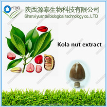 factory supply Top Qualit From 10 Years experience manufacture kola nut extract