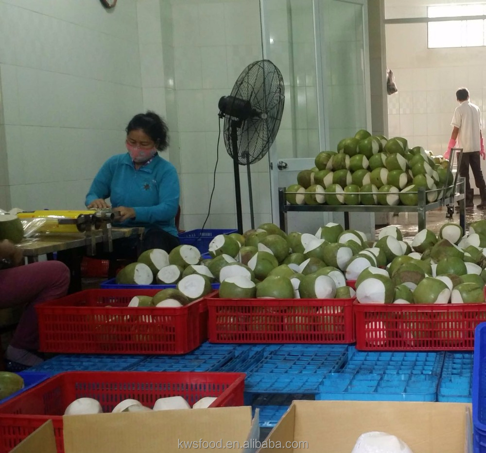 fresh young coconuts cheap factory price
