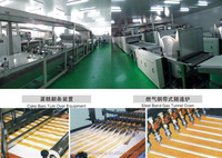 multi-functional Fully-automatic Layer Cake & Swiss Roll Production Line