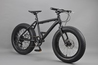 20 inch Fat bike adult tricycle