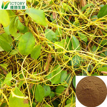 Chinese Herb Dodder extract for Male Sexual Power Enhancement