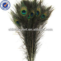 High Quanlity Natural Color With Eye Peacock Feather For Sale