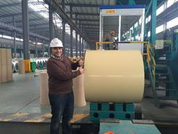 building material color coated sheet coil for shelter roof etc