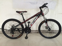 the mini bmx bike