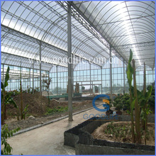 2015new UV protection greenhouse film fastening with anti-fog