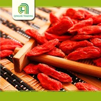 Brand new high quality goji berry powder for wholesales super quality china dried food red goji berry