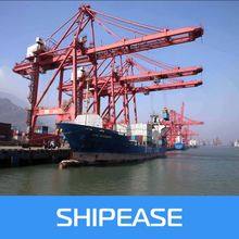 shenzhen freight forwarder cheap sea freight shipping rate china to Wellington,Newzealand