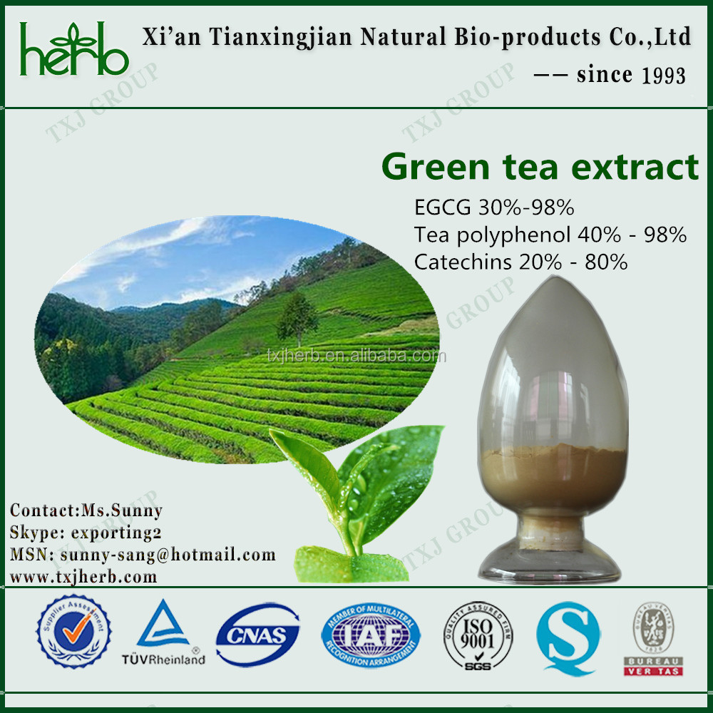 green tea extract catechine