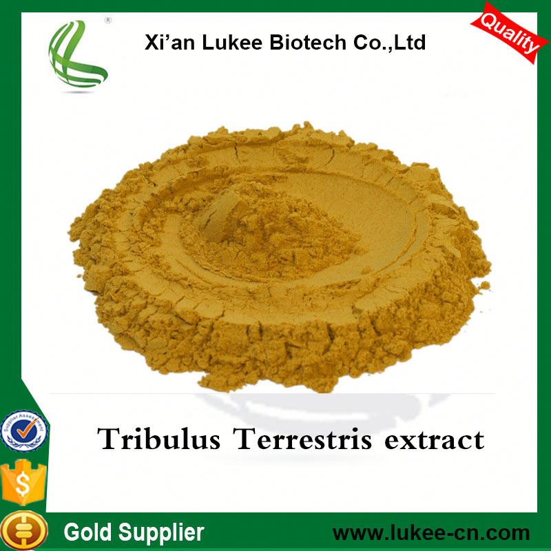 Herbal Extract Bulgarian Tribulus/Tribulus Terrestris Extract