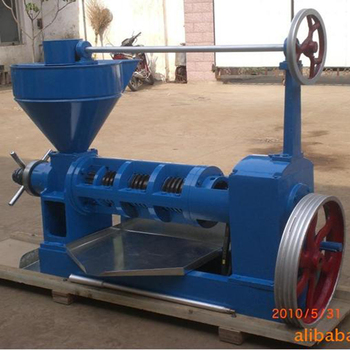 6YL-95 palm kernel /peanut kernel/groundnut kernel oil press