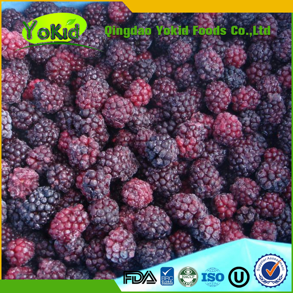Passed HALAL Healthy china origin frozen blackberry