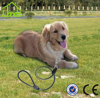 Colorful Nnylon Woven Dog Leash and Collar for Large Dog