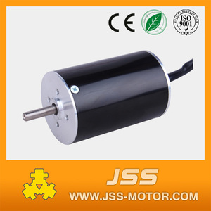 dc motor 24v brushless 25w mini brushless motor
