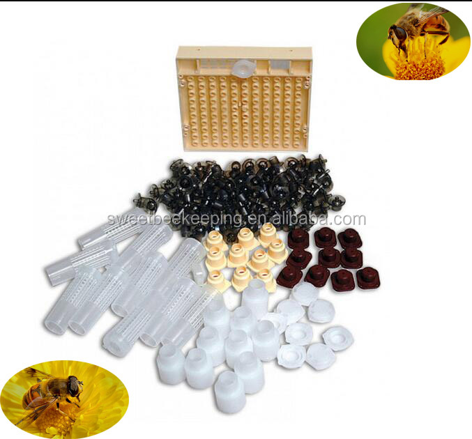 Hot Sale Beekeeping Tools Complete Honey Bee Queen Rearing Kit