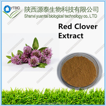 factory supply High Quality Natural Red Clover Flower Extract