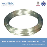Hebei Galvanized Binding Wire / Galvanized Metal Wire