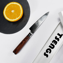 TS10016 High quality fine&sharp 3.5'' kitchen paring knife