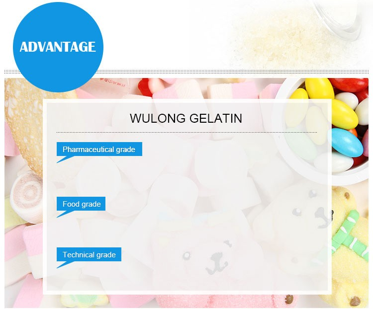 hot sell edible gelatin for meat products