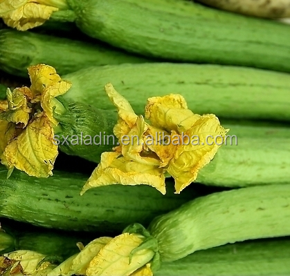 100% Natural Luffa cylindrica (L.) Roem. extract