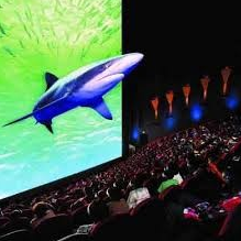 5d 6d Cinema Using 2,4,6 Projectors Curved Screen