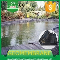 HDPE/LDPE geomembranes price used for pond liner/dam/garbage landfill/ water waste treatment 2.5mm