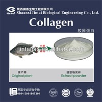 factory supply food grad fish scale collagen