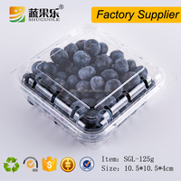 Disposible plastic 125g strawberry punnet blueberry clamshell