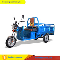NEWEEK adult bus tuk tuk passenger scooter cargo electric delivery tricycle