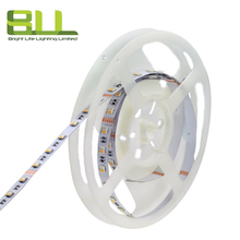 High performance 12mm 4500K tape led 5050 rgbw light strip