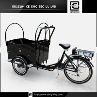 cargo electric vehicle 2015 new BRI-C01 3 wheels cargo motor tricycle
