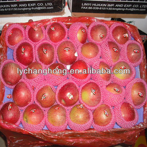 Kashmir Apple Qinguan