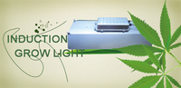 2015 Best Selling new product 150w Full Spectrum LVD Plant Indoor Grow Light price induction lamp