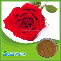 Best quality and pure natural rose extract polyphenol with competitive price