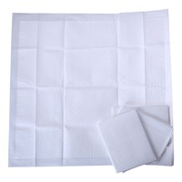 Wholesale New Products Health Care Product Puppy Training Pad