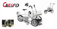 Passenger pedicab 3 wheel with CE certification