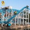 Amusement Park Equipment Crazy Spinning Track Rides crazy mouse Small Roller Coaster