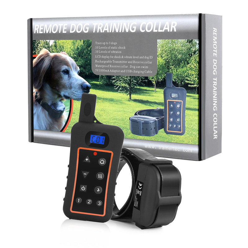 professional dog training DT1200V how to train your dog