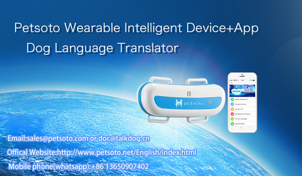 E9 dog language translator accesories wearable technology with APP