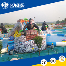 Cheap Used Inflatable Water Slide / Inflatable Pool Slide