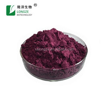 OEM Private Label Best Price acai berry extract powder 4:1 10:1
