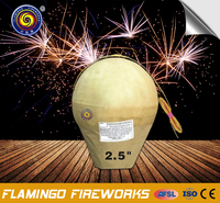 "Reasonable price 2.5"" Display Shell import fireworks"