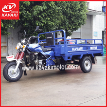 3 wheel truck/3 wheel passenger motorcycle/gas powered tricycle/20cc air box for Egypt market