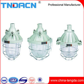 China 100W explosion proof lamp (DIP)