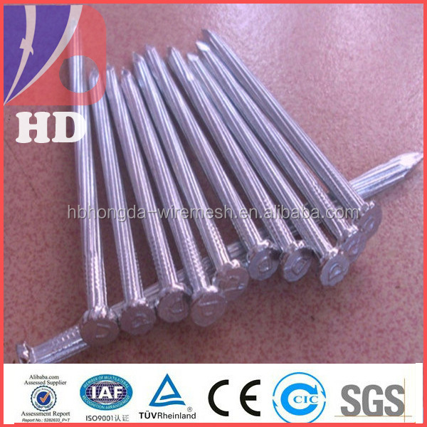 Galvanized concrete nails / Black concrete steel nail in low price and high quality