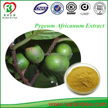 Pure Natural Pygeum Africanum Extract
