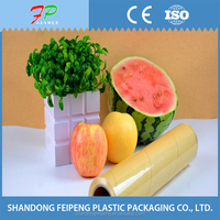 2016 small roll wrap film transparent pvc cling film